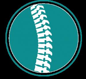 Ergonomic Orthopedic