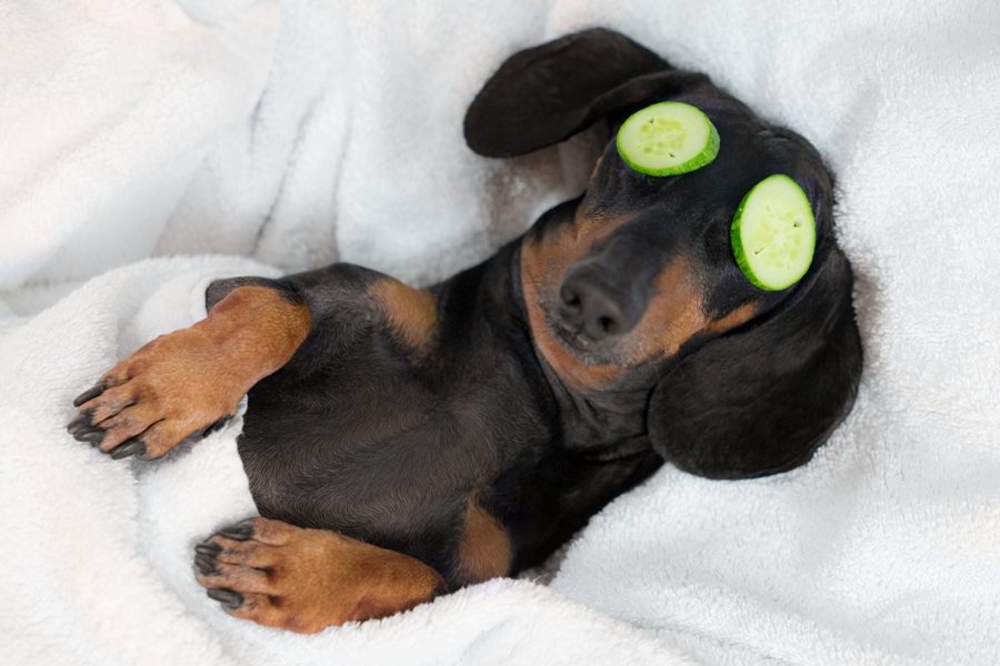 Best foods to enhance good sleep
